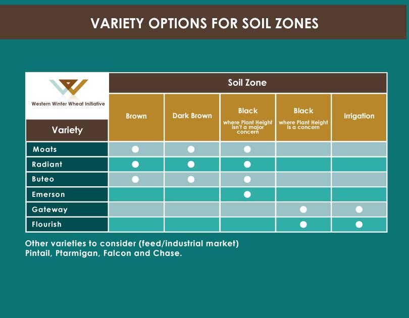 Top winter wheat varieties for alberta saskatchewan manitoba for Soil zones saskatchewan