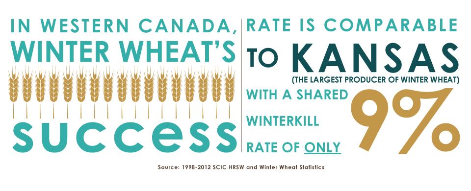 WWWI-Kansas-Infographic[2]
